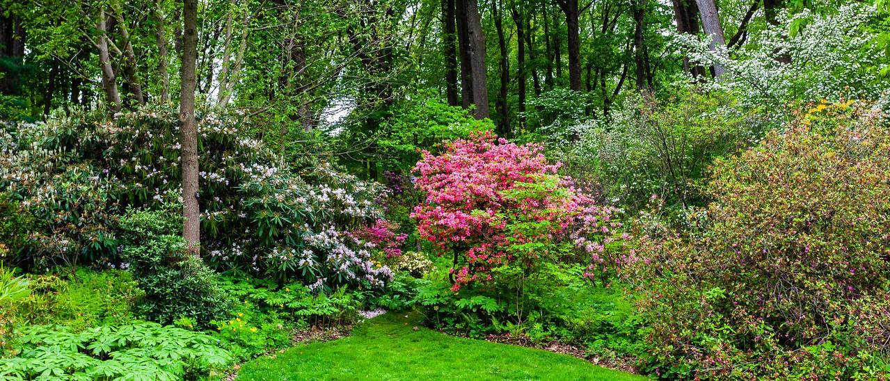 滨州詹金斯植物园(Jenkins Arboretum),一步一景_图1-7