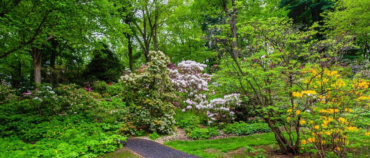滨州詹金斯植物园(Jenkins Arboretum),一步一景_图1-12