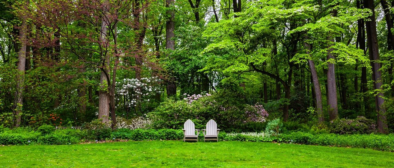 滨州詹金斯植物园(Jenkins Arboretum),一步一景_图1-6