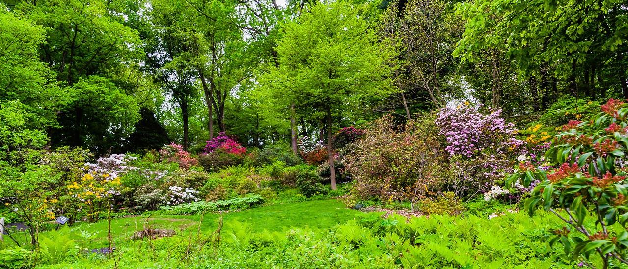 滨州詹金斯植物园(Jenkins Arboretum),一步一景_图1-10