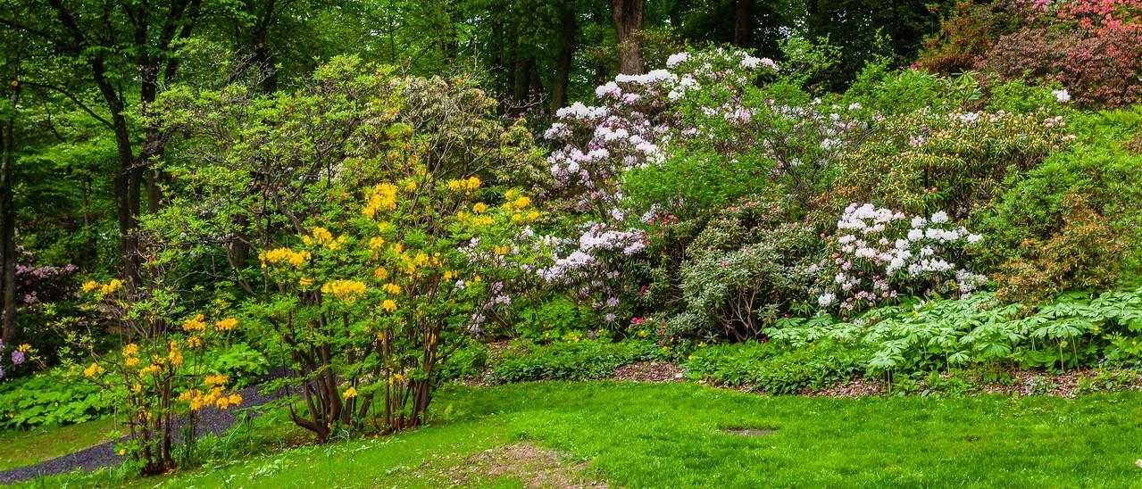 滨州詹金斯植物园(Jenkins Arboretum),一步一景_图1-5