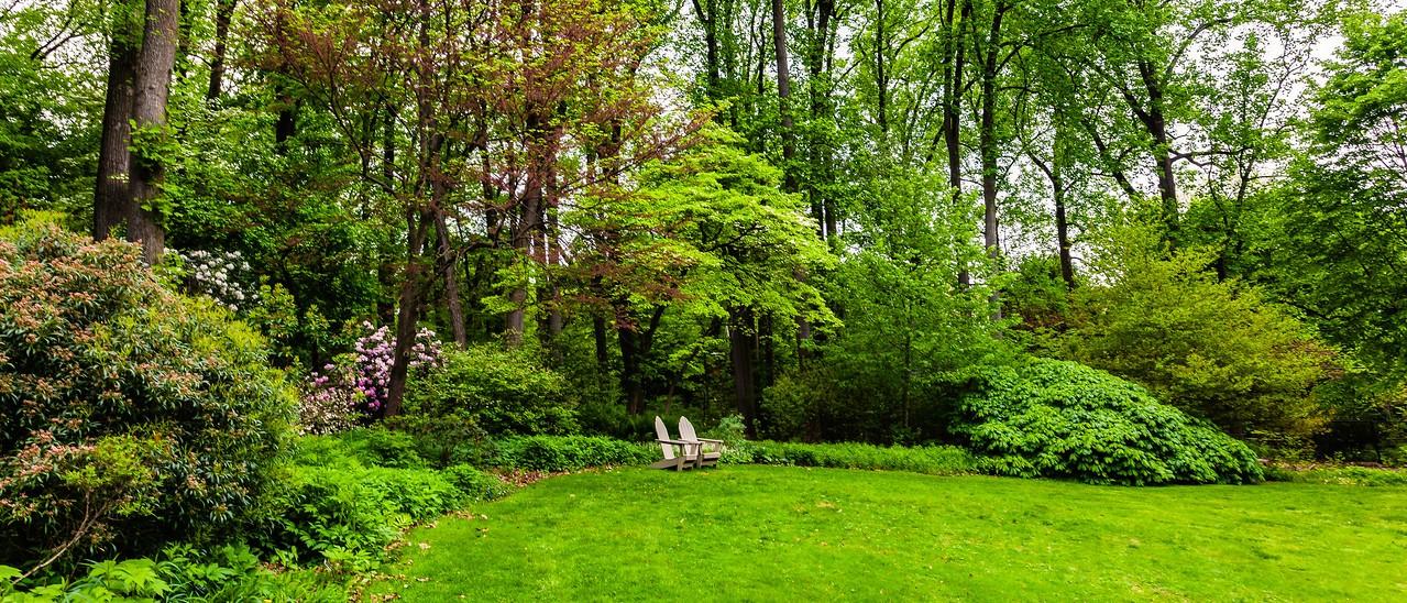 滨州詹金斯植物园(Jenkins Arboretum),一步一景_图1-1