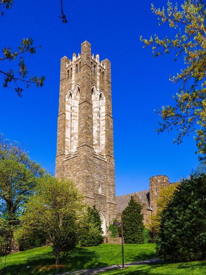 滨州斯沃斯莫尔学院(Swarthmore College),校园小花园_图1-7
