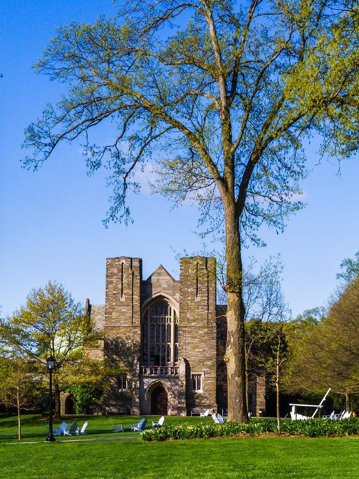 滨州斯沃斯莫尔学院(Swarthmore College),校园小花园_图1-9