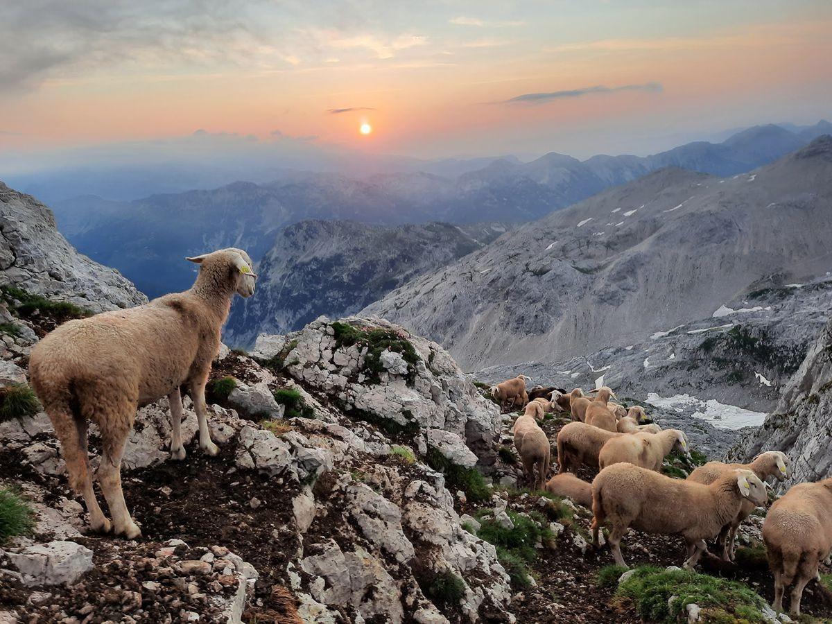 克恩山上看日出_图1-7