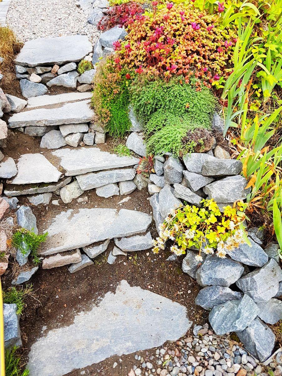 参观玛丽特的花园-2_图1-12