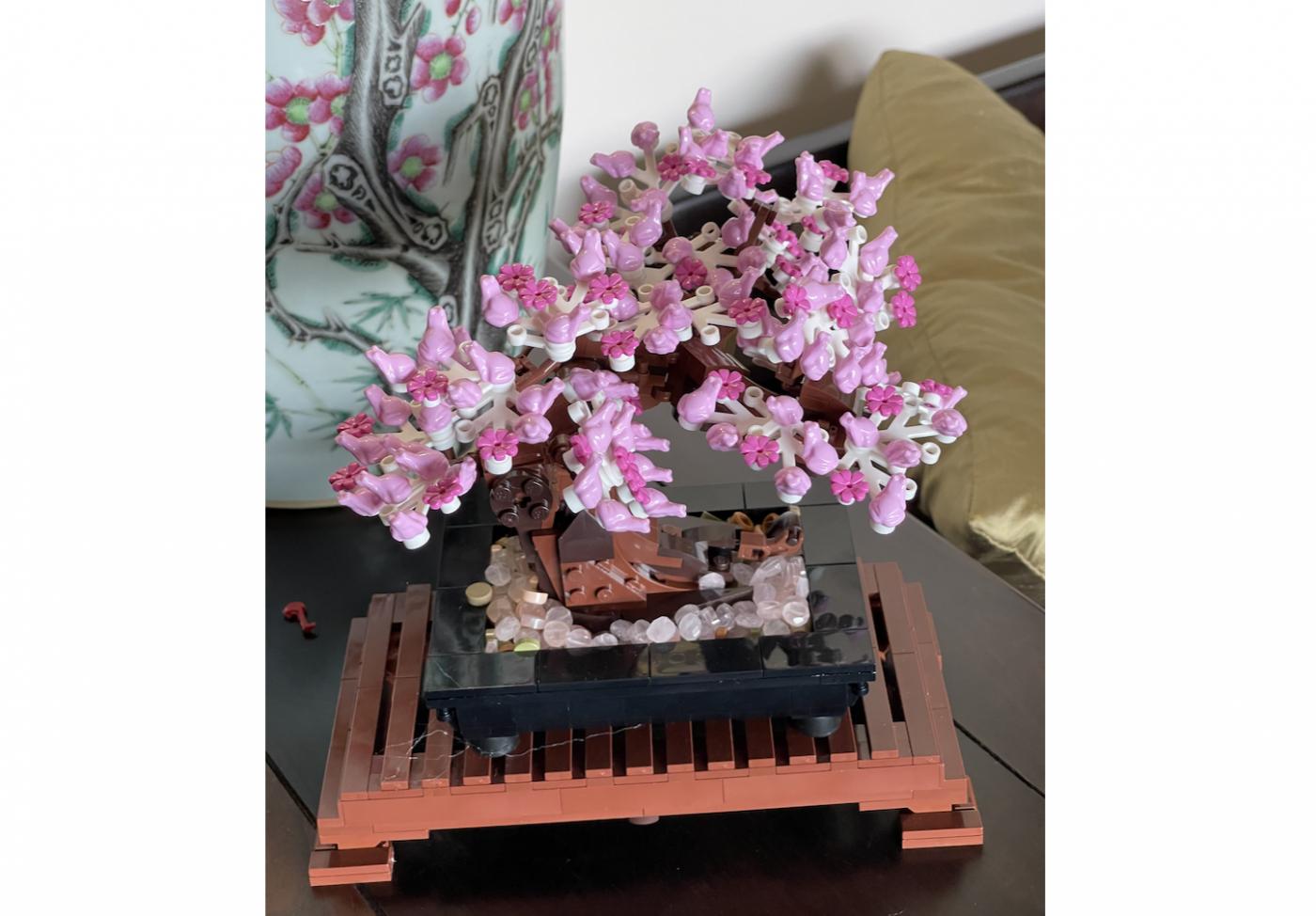 野花、家花、乐高花、苹果干、小龙_图1-17