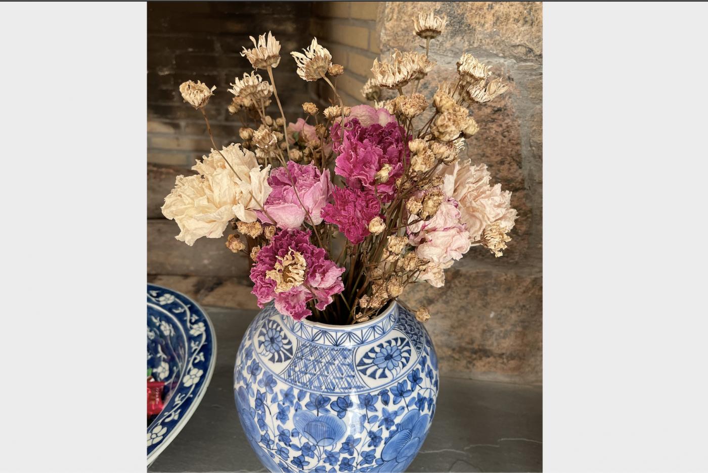野花、家花、乐高花、苹果干、小龙_图1-15