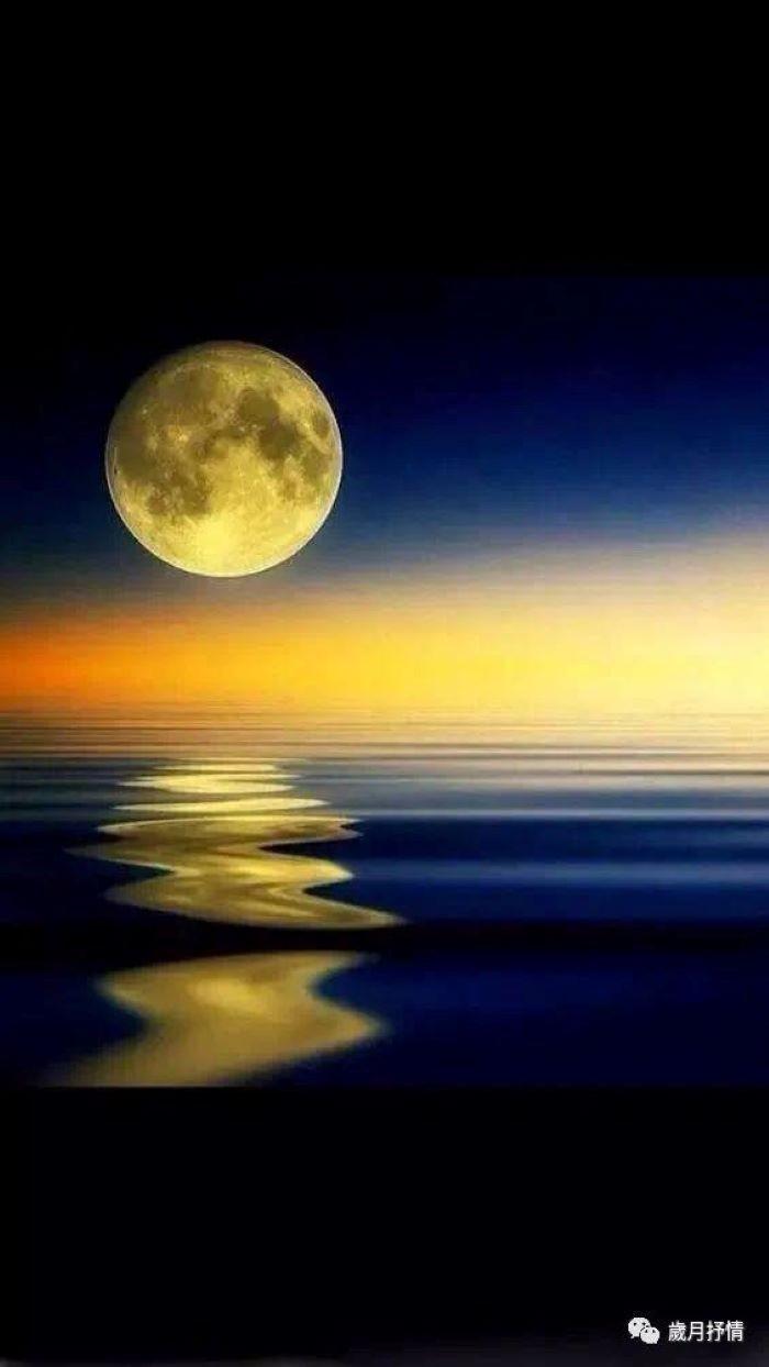 每当月圆之夜!(笨小孩的世界之七十。)_图1-1
