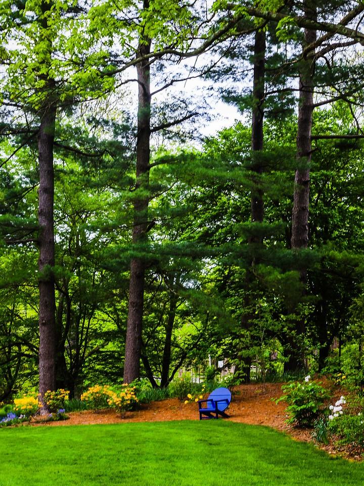 Chanticleer花园,幽静的树林_图1-7