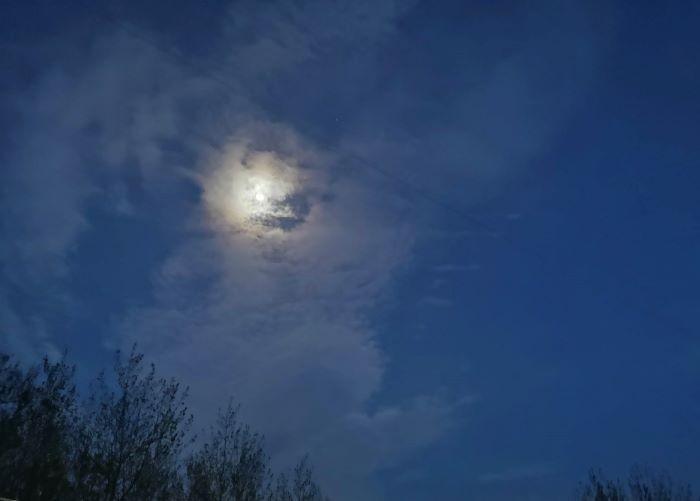 逃走的月亮!(笨小孩的世界之七十一。)_图1-1