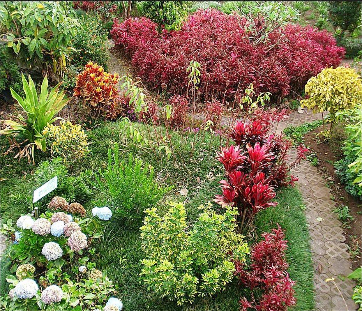 哥斯达黎加共和国_图1-25