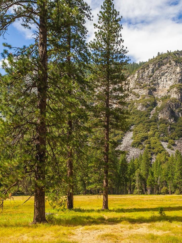 美国优胜美地国家公园,巨石热景_图1-5