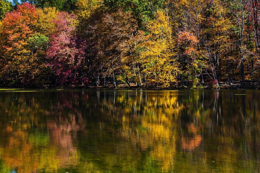 宾州布什基尔瀑布(Bushkill Falls),爬山看瀑布_图1-2
