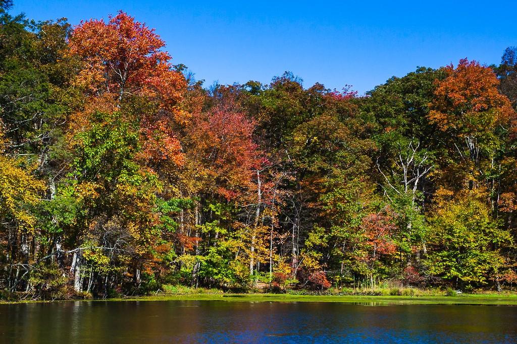 宾州布什基尔瀑布(Bushkill Falls),爬山看瀑布_图1-9