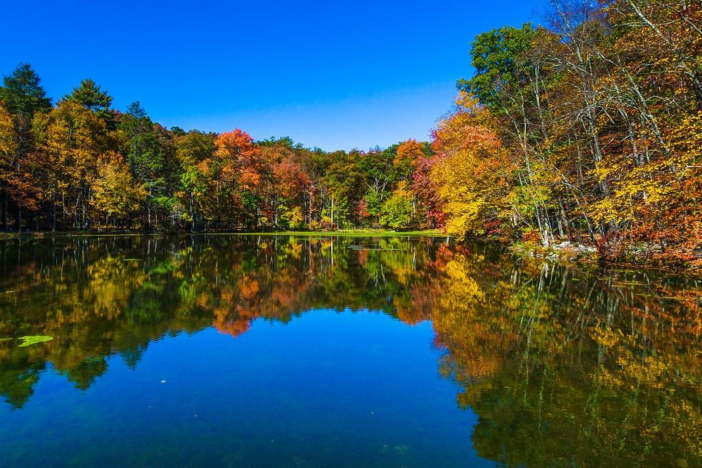 宾州布什基尔瀑布(Bushkill Falls),爬山看瀑布_图1-4