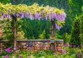 Chanticleer花园,春天记忆