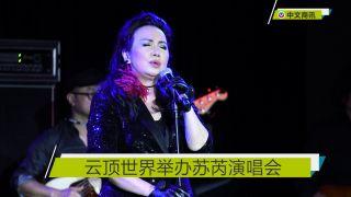 【视频】云顶世界举办苏芮演唱会