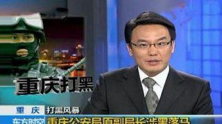 央视主持人张羽辞职 任今日头条母公司副总裁