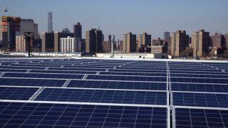 怪川普征税惹祸?全美太阳能业者数量两连跌