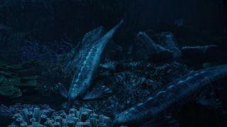 中国发现2.48亿年前头部像鸭嘴兽的龙化石