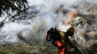 防患于未然!加州国民警卫队首次参与预防山火培训