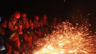 内蒙古呼伦贝尔森林火灾火线达7.8公里 消防官兵全力扑救