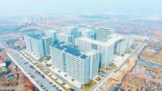 去年中国跨境电商零售进出口额增50% 电商法将带来新机遇