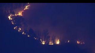 佛州爆发两场野火相距70英里 火情仍未受控