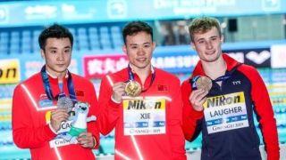 神剧情!中国跳水队捡来一块金牌 英国小伙痛哭