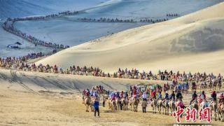 """甘肃敦煌大漠驼队蜿蜒2公里宛若""""长龙"""""""