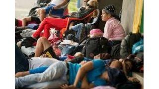 零难民!曝川普政府考虑明年不接纳难民
