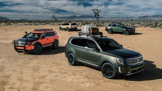 KIA旗下多个车款热销 2019年7月销量超越去年同期纪录