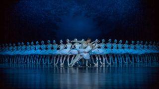 海派芭蕾《天鹅湖》亮相林肯中心 48只白天鹅惊艳亮相 史上人数之最!