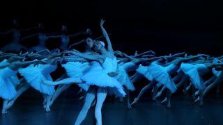 走进经典 古典芭蕾舞剧《天鹅湖》的前世今生