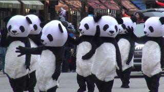 芝加哥感恩节大游行 华人团体十大高光时刻