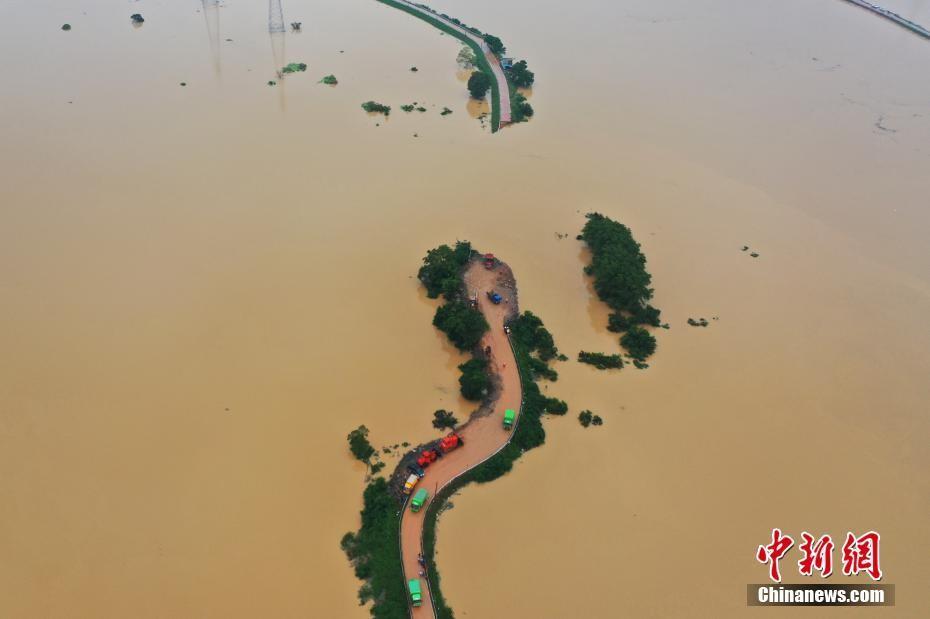 江西鄱阳县问桂道圩漫溃口 决口长约120米