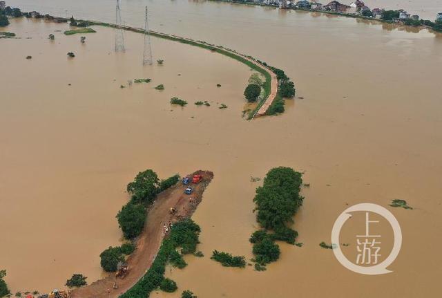 江西洪涝灾害已致550万人受灾 万余间房屋倒塌或损坏