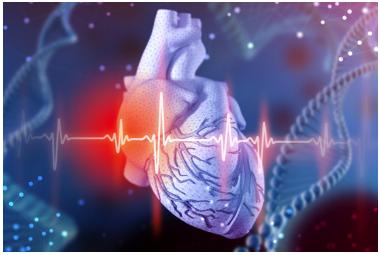 揭秘辅酶Q10的强大功能,让专家来告诉你……_图1-1