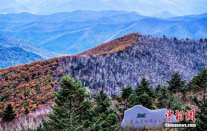 第一批中国国家公园公布 有你家乡的吗?