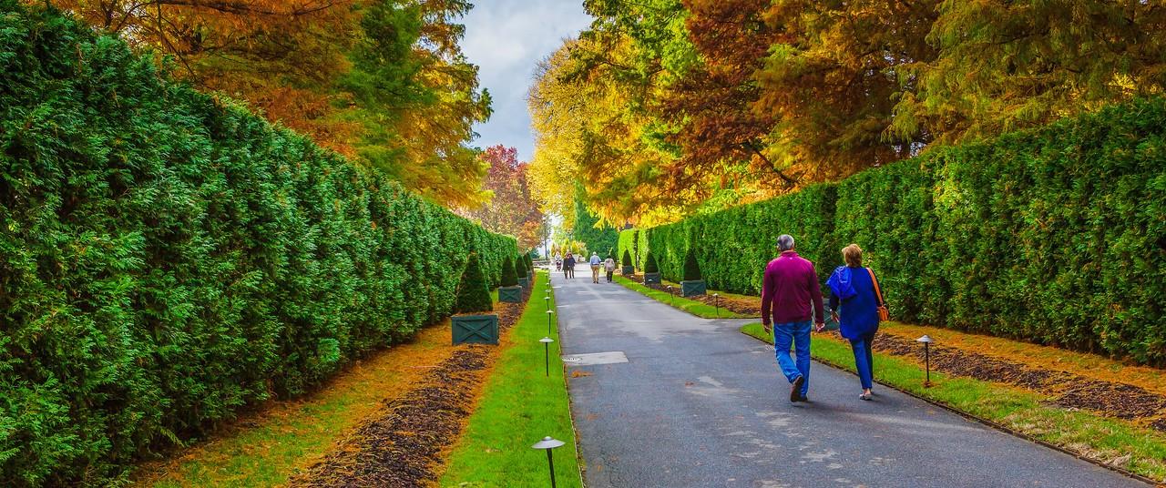 宾州长木公园,定格美景