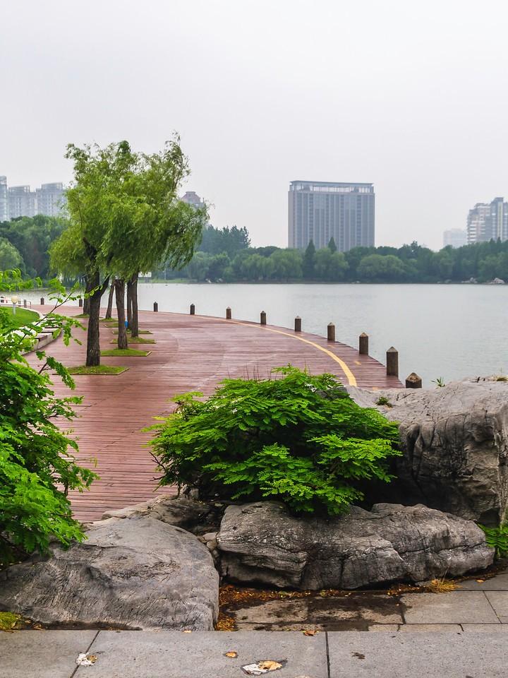 上海世纪公园,大城市中的大公