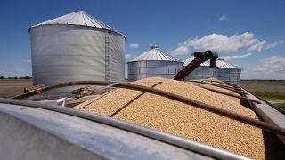 中粮集团:中国或加快采购美国农产品