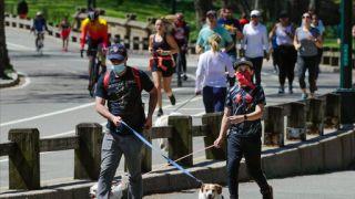 纽约抗体研究结果出炉:截止3月底超200万人感染新冠