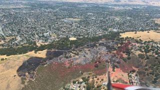 北加圣何塞山火烧90英亩 疑人为纵火1人被拘