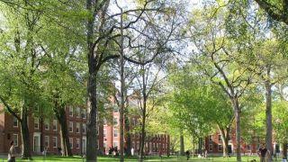 哈佛大学也没钱了...提议让员工考虑提前退休