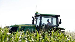 中国采购超170万公吨美国玉米 创最大单日采购规模