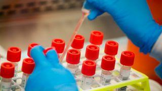 FDA疫苗顾问:可能在下周内批准辉瑞新冠疫苗