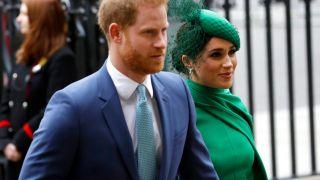 离开英国王室在美国全面发展 哈里王子将赴硅谷就任