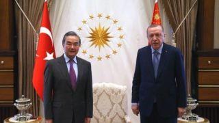 土耳其总统会见王毅:我公开接种 展示中国疫苗安全性